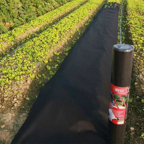 Agriculture anti-uv high quality pp non woven fabric for weed control nonwoven fabric in roll