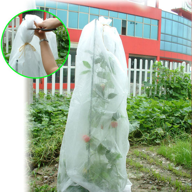 100%pp Spunbond Non Woven Fabric for Fruit Bag Cover Banana Bag