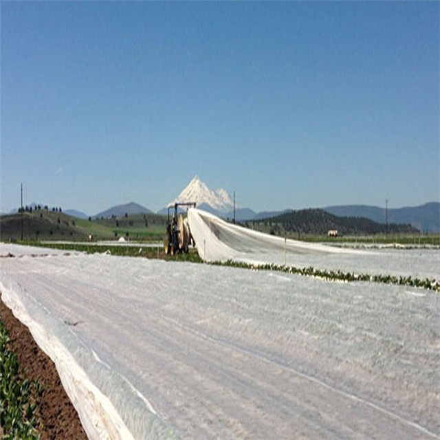 Agriculture Nonwoven Fabric Cover Non Woven Vegetables Cover PP Nonwoven Fabric