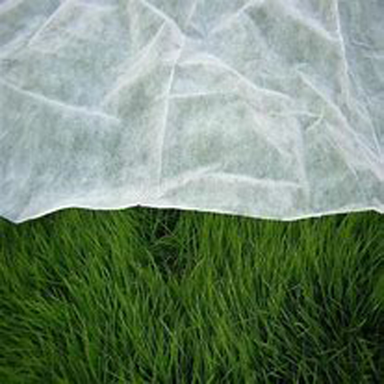 Wholesale Covering Material for Plant (spunbond Agro Fabric)
